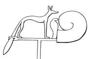 Wepwawet's Symbol