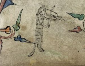 Play some music, you cool cat