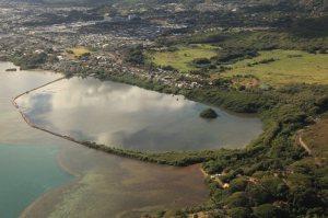 Fish Pond in Hawai'i