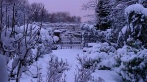 Winter's cold arrives